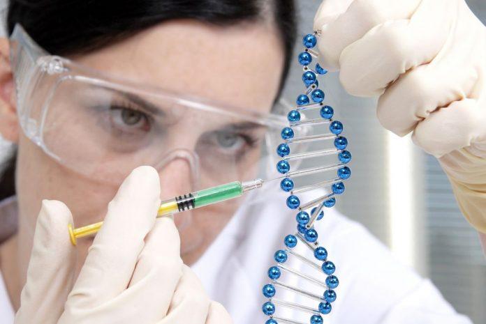klotho nueva proteina juventud